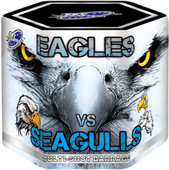 Eagles Vs Segulls